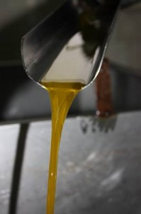 2e1ax_default_entry_Olive-oil-7